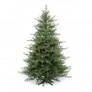 Искусственная елка «Скарлет» 183 см