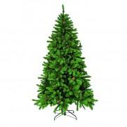 Триумф ель Императрица с шишками 155 см зелёная